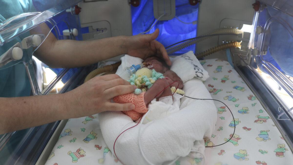 pulpitos para bebés prematuros